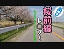 再び桜前線レ◯プ!穴場♂巡りのライダーと化した先輩
