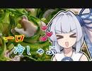 【一口冷しゃぶ】葵ちゃんの簡単おつまみで雑にのみたーい!!!!!!!!!!!!!!!!!!!!!!!!!!