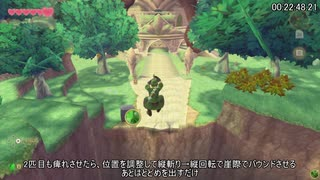 【RTA】ゼルダの伝説スカイウォードソード