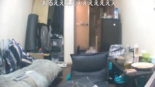【ニコ生】シンクに駆け込む石田さん