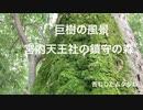 【巨樹の風景】 旧厳島神社兼帯(けんたい)社「宮内天王社」と社叢 夏の終わりに