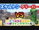 【マイクラ】スケルトンvsクリーパー 最強のモブは誰だ!?【モブ最強王決定戦】