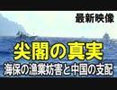 【尖閣沖の真実】海保の漁業妨害と中国の支配[桜R3/9/4]