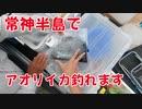 【海釣り動画】福井県常神半島ではヤエンでアオリイカが釣れます!エギングも釣れます!