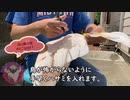 インコ・オウムのクリッピング風切り羽の切り方教えます◆#4◆羽夢蔵◆Moluccan Cockatoo