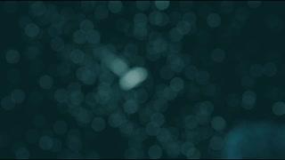 蚊柱 / 重音テト