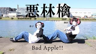 【しいたけ&あられ】Bad Apple!!【踊って