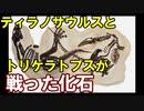 【ゆっくり解説】モンタナ・デュエリング・ダイナソーズ【ゆっくり恐竜解説±0】お試し視聴版
