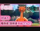 【ポケモン剣盾/DLC2冠の雪原】ポケモン好きが、初めて種族値・個体値を意識し冒険!【実況】#62