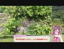 【さとうささら】赤城山へ避暑とお食事