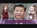 【台湾と中国の戦い】世界の戦争・事件・国際情勢を解説!【ゆっくり解説】