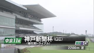 【ウマ娘風】第69回GⅡ神戸新聞杯(2021)