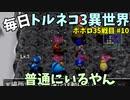 【トルネコの大冒険3】 ほぼ毎日まったりポポロ異世界の迷宮を初攻略リベンジ挑戦 35戦目 #10
