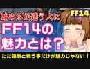 【FF14】FF14のメインコンテンツってなに?主観で答えるよ【一問一答vol3】