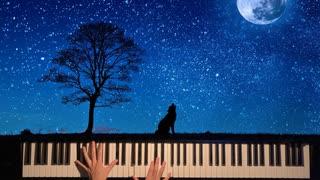 『【ピアノ】アマツキツネを弾いてみた【高2】』のサムネイル