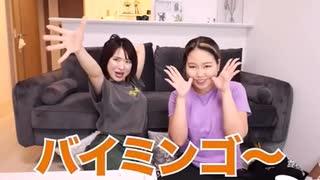 【シンクロ集】平成フラミンゴのシンクロ