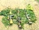 東側の狙撃銃3種類