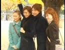 星組 韓国観光地巡り