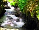 【ヒーリング作業用BGM】穏やか系ガムラン+川の音+新緑画像【癒し】