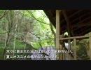 甘木観光バス 秋月線 後編 (だんごあん延長運行) : 下渕→だんごあん