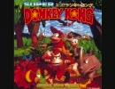 スーパードンキーコング バナナジャングル【DK Island Swing】