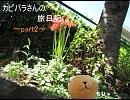 カピバラさんの旅日記~part2~