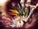 【トゥライ】「極楽鳥 -bird of paradise-