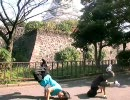 魔界塔士SaGaの「禁断の塔」をフリーダムに踊ってみた