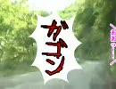 ちょっと静岡県をドライブしてきた 井川雨畑林道編~その2