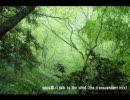 【音質テスト】opusⅢ - I talk to the wind (The transcendent mix)