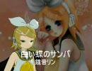 【昭和歌謡P】白い蝶のサンバ【RRD】(1番のみ)