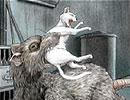 『怪奇生物の世界』東京巨大マウス