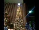 アルトサックスで「サンタが街にやってきた」を吹いてみた