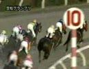 081225第8回兵庫ゴールドトロフィー(JpnIII)検討用参考レース