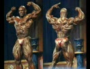 The Ultimate Human Professional Body Builder Image Collection vol. 2
