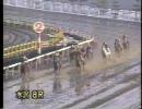 【岩手競馬】 1995年 桐花賞 (画質向上版) トウケイニセイ引退レース
