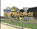 【競馬】2009 第26回 フェブラリーS サクセスブロッケン(GC)