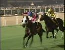 【競馬】 2008 ドバイDF ジェイペグ(JAY PEG) 【ちょっと盛り】