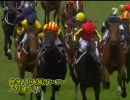 【競馬】 2006 メルボルンカップ デルタブルース 【全部盛り】