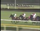 【競馬】[2005年]青葉賞(GII) ダンツキッチョウ