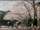 昭和初期のカラー映像