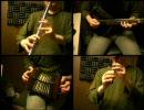 東方永夜抄「シンデレラケージ」をアイリッシュ楽器等で演奏してみた。