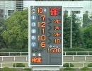 【競馬】 2009 兵庫チャンピオンシップ 【