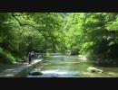 2009年5月10日(日) 養老渓谷粟又の滝遊歩道