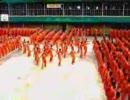 1500人の囚人によるマイケルジャクソンの「スリラー」