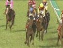 【競馬】 2006 目黒記念 ポップロック 【ちょっと盛り】
