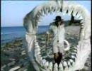 タイムスリップ! 恐竜時代 古代の海へ②