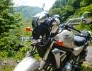 【バイク】バリオスⅡで転倒事故【クラッシュ】