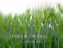 谷山浩子のオールナイトニッポン 1983年07月14日