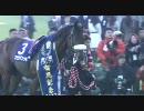 【競馬】 2007 有馬記念 マツリダゴッホ 【全部盛り】